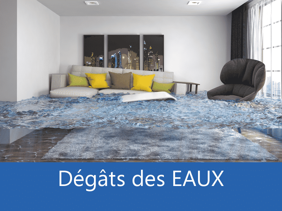expertise humidité 78, expert humidité Versailles, cause moisissure Yvelines, solutions hulidité Saint-Germain-en-Laye,