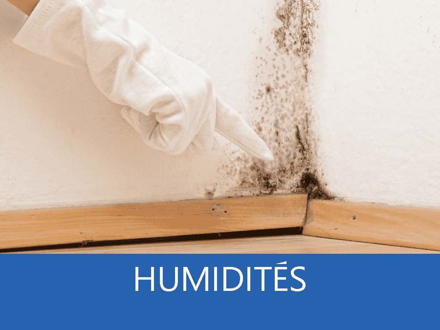 expertise humidité 78, expert humidité Sartrouville, cause moisissure Versailles, solutions humidité Yvelines,